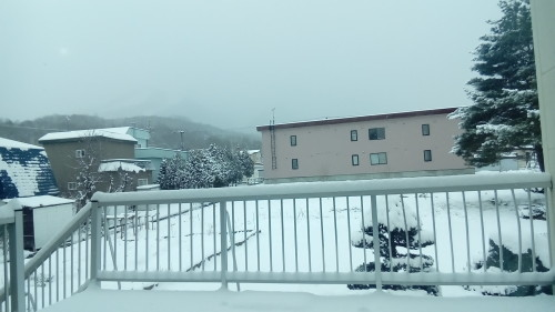きゅきゅっ新雪のおしゃべり_c0220170_17331008.jpg