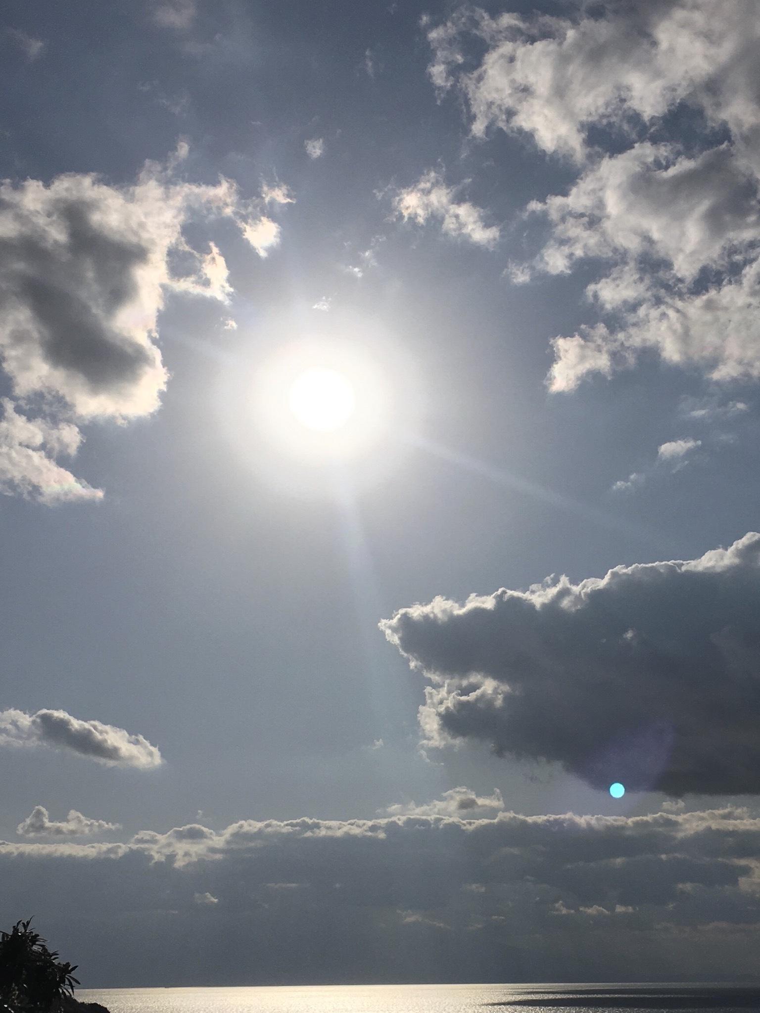 いい天気ですね!_d0134352_18001656.jpeg