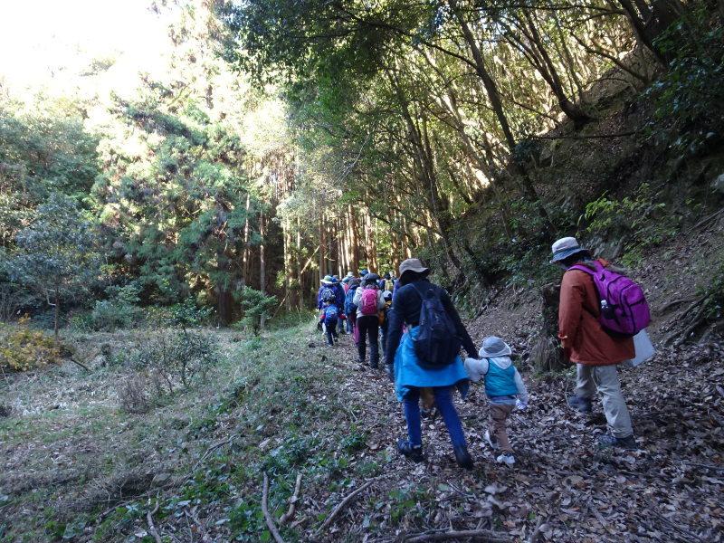 きのくに子どもNPO「孝子の森で里山体験」参加者 29名_c0108460_18053908.jpg