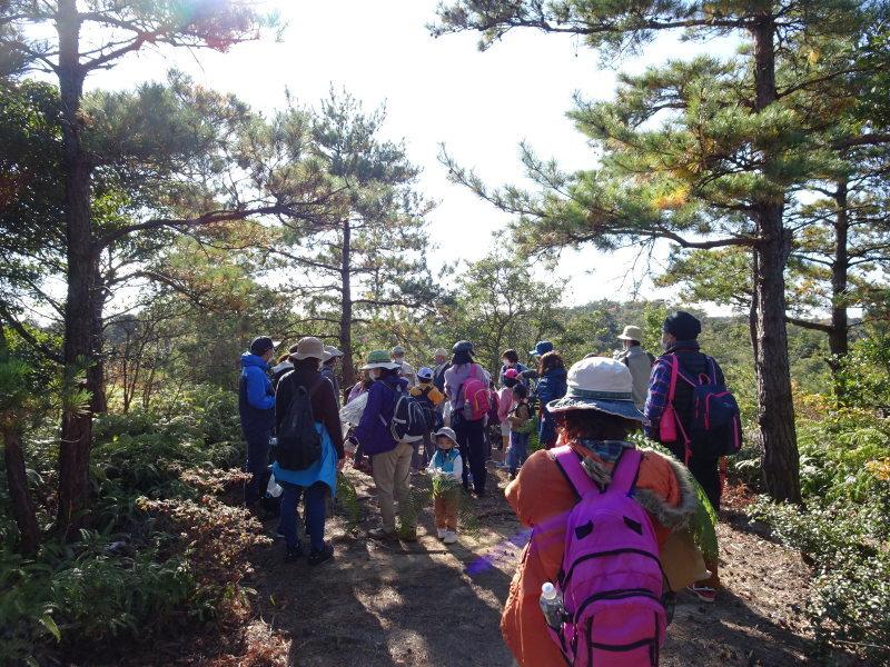 きのくに子どもNPO「孝子の森で里山体験」参加者 29名_c0108460_18062145.jpg