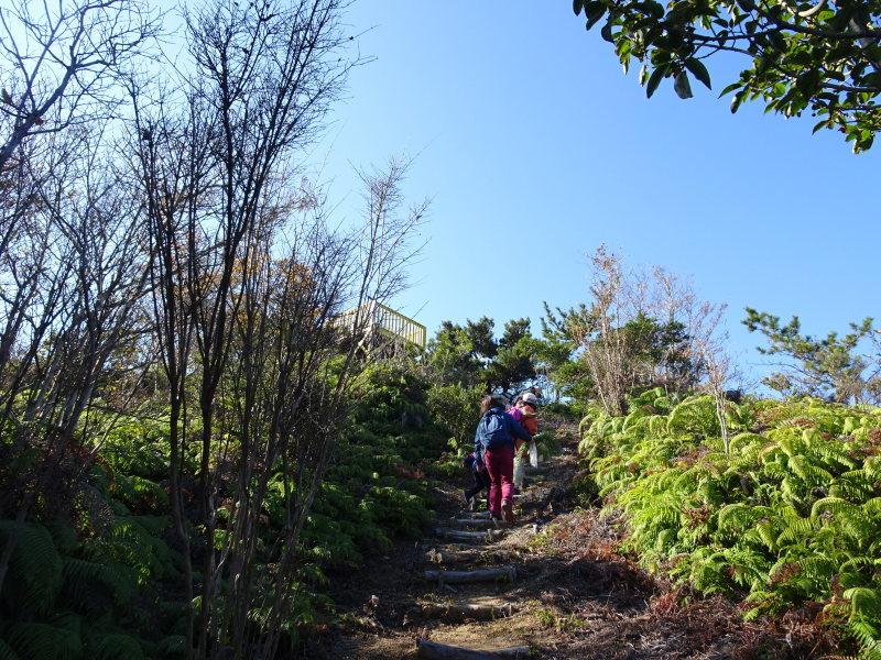 きのくに子どもNPO「孝子の森で里山体験」参加者 29名_c0108460_18070216.jpg