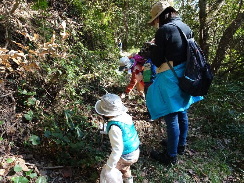 きのくに子どもNPO「孝子の森で里山体験」参加者 29名_c0108460_18070359.jpg