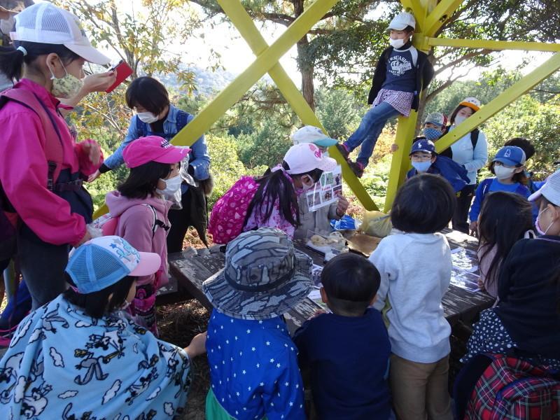 きのくに子どもNPO「孝子の森で里山体験」参加者 29名_c0108460_18080767.jpg