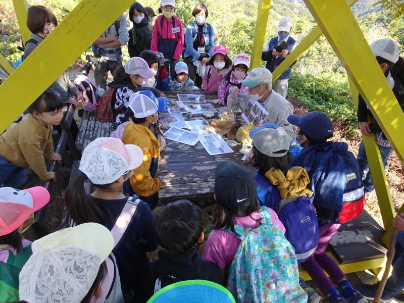 きのくに子どもNPO「孝子の森で里山体験」参加者 29名_c0108460_18080837.jpg