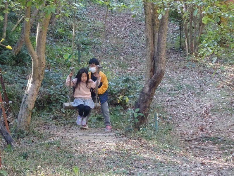 きのくに子どもNPO「孝子の森で里山体験」参加者 29名_c0108460_18113667.jpg