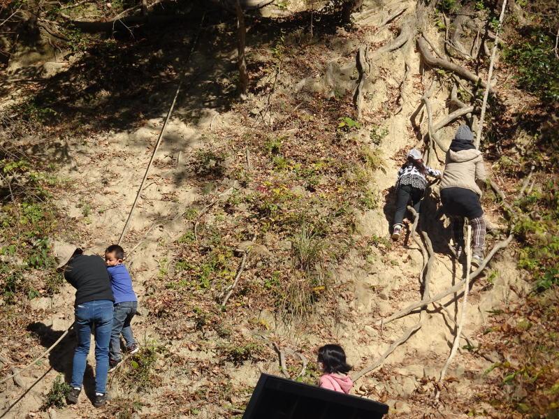 きのくに子どもNPO「孝子の森で里山体験」参加者 29名_c0108460_18122767.jpg