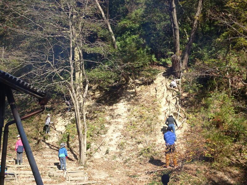 きのくに子どもNPO「孝子の森で里山体験」参加者 29名_c0108460_18122865.jpg
