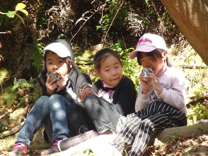 きのくに子どもNPO「孝子の森で里山体験」参加者 29名_c0108460_18214138.jpg