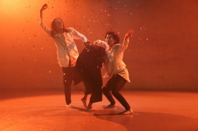 3つのカラダが語った「ダンスブリッジ」笠井瑞丈監修版終わる_d0178431_02103999.jpg