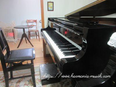 ピアノ教室勉強会終了☆「考える」力_d0165645_09302880.jpg