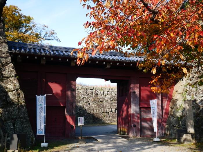 和歌山城公園の 紅葉・黄葉  2020-12-08 00:00_b0093754_21005673.jpg