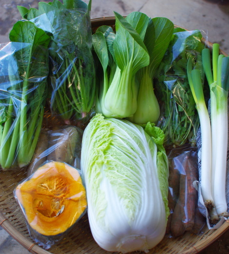 【最終回】今週の野菜セット(12/8~12/12着)_c0110869_16302781.jpg