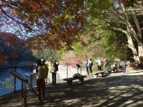 バードウォッチング・森林植物園_c0218841_11462209.jpg