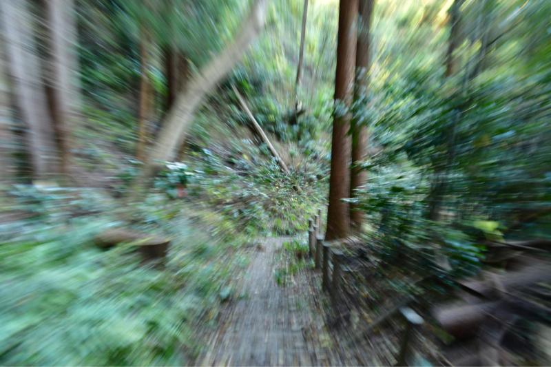 Mimase Pass 下山_b0223512_14413309.jpg