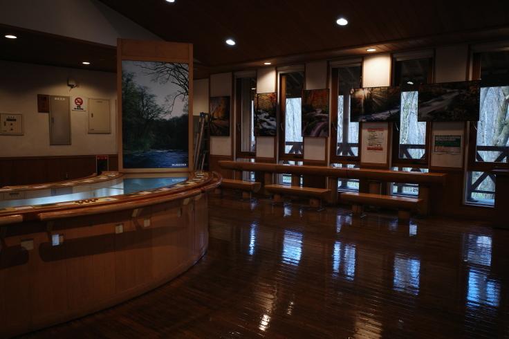 Go to トラベル in 青森県 その12 ~ 奥入瀬渓流 十和田湖_a0287336_17125056.jpg