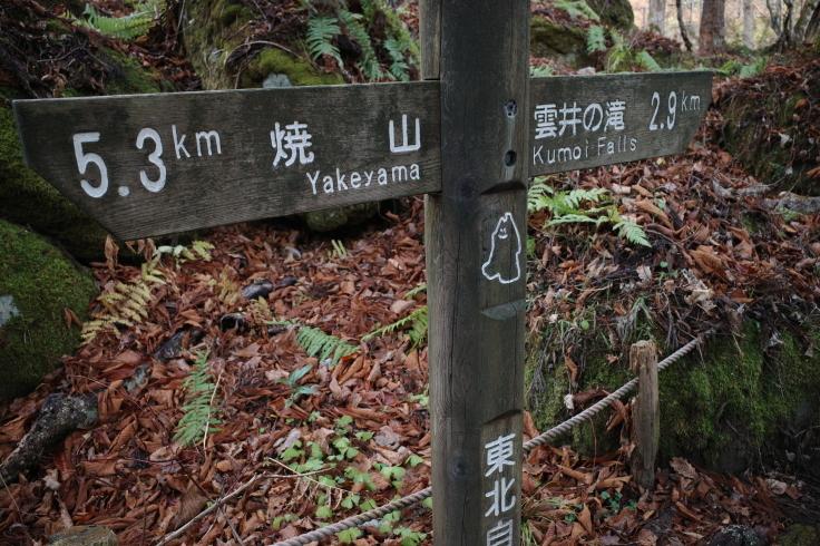 Go to トラベル in 青森県 その12 ~ 奥入瀬渓流 十和田湖_a0287336_17291436.jpg