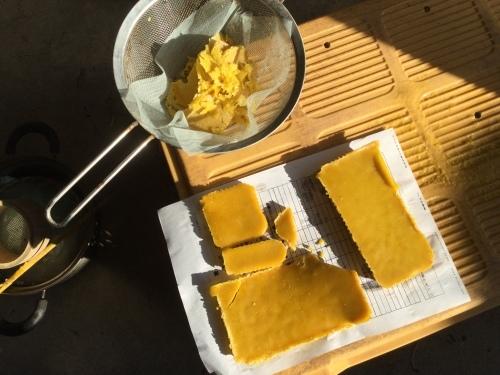 日本ミツバチ絶不調 ミツロウを精製_e0181260_07194118.jpeg