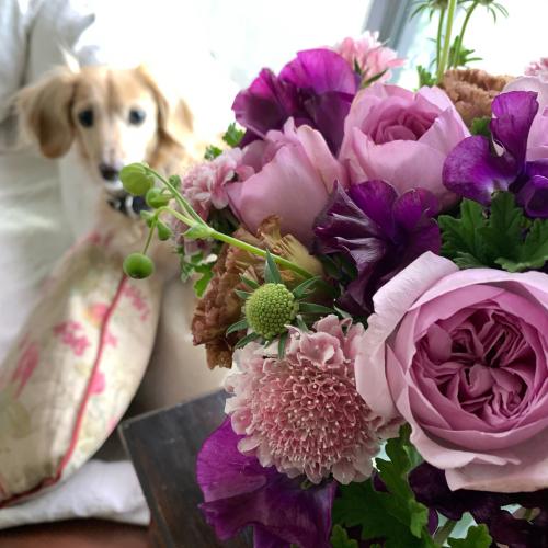 結婚記念日のブーケ_b0105897_07513248.jpg