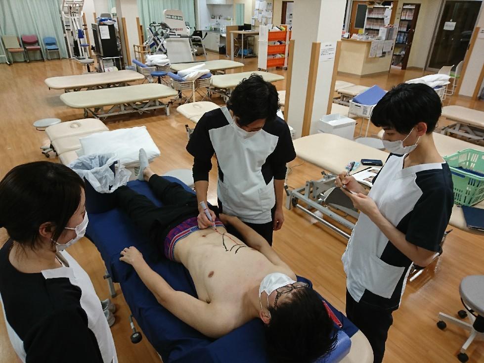 第185回TOC体表解剖勉強会|腹直筋の触察_b0329026_22503217.jpg