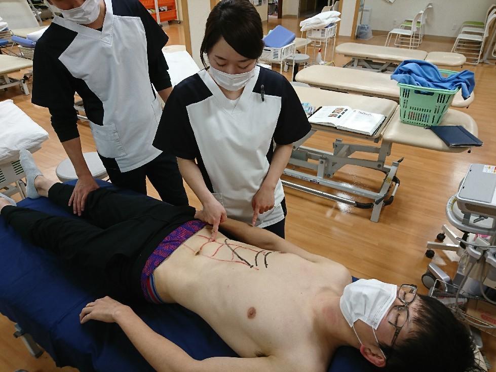 第185回TOC体表解剖勉強会|腹直筋の触察_b0329026_22503354.jpg