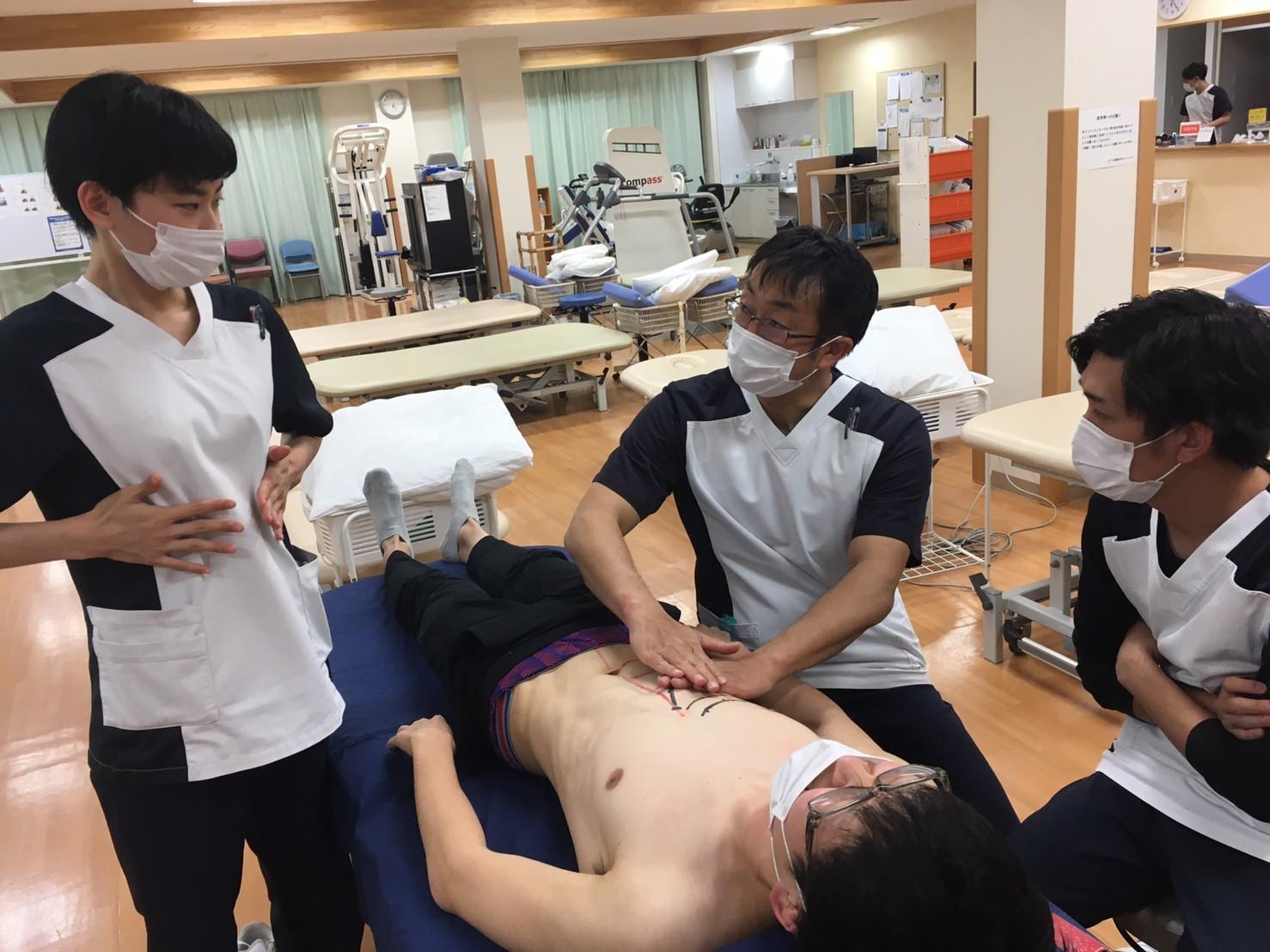 第185回TOC体表解剖勉強会|腹直筋の触察_b0329026_22504929.jpg