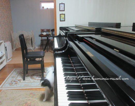 ピアノ調律☆大事にするから・・_d0165645_15050775.jpg