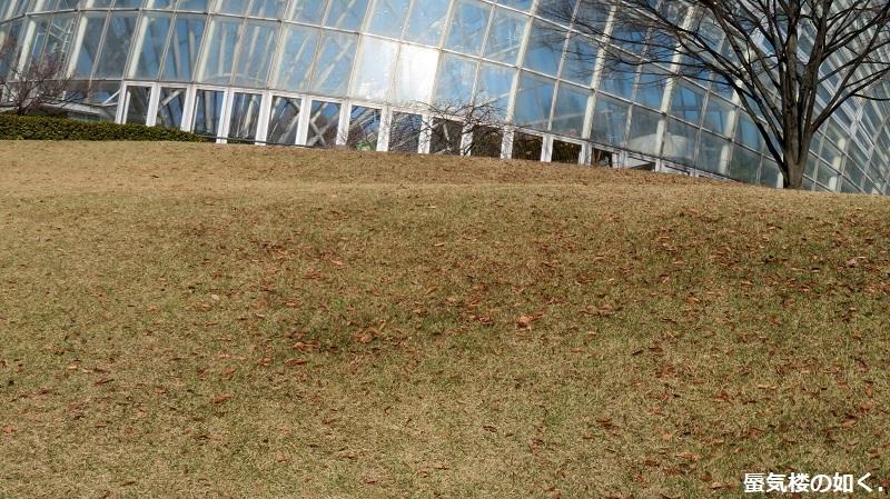 「神様になった日」舞台探訪007 第07話「映画撮影の日」山梨市笛吹川フルーツ公園_e0304702_08123008.jpg