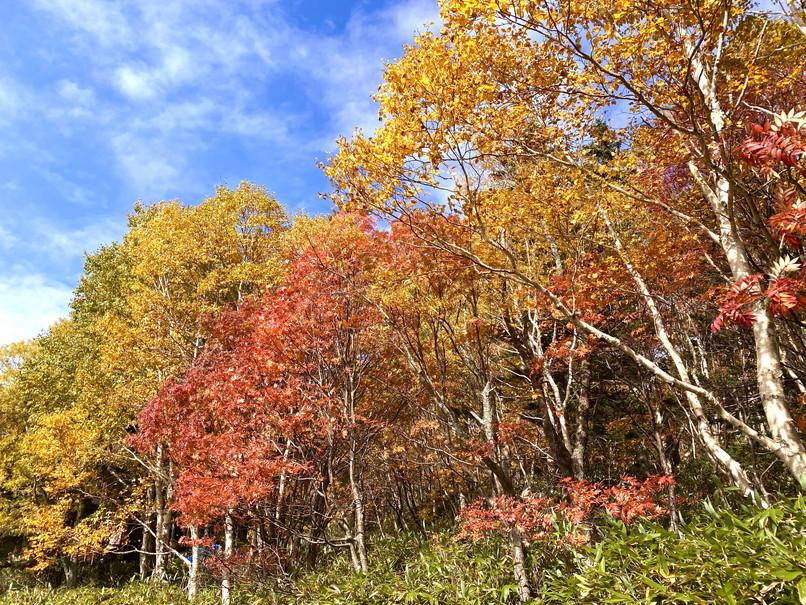 """2020年10月 『秋の空沼岳、懐かしの写真と想い出』 October 2020 \""""Mt Soranuma in the Autumn with Old Photos and Memories\""""_c0219616_16323972.jpg"""