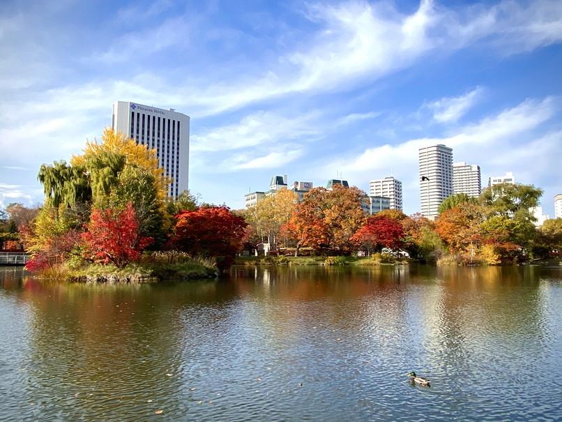 """2020年10月 『錦秋の札幌:八剣山、中島公園、北海道大学』October 2020 \""""Autumn Color in Sapporo\""""_c0219616_17575906.jpg"""