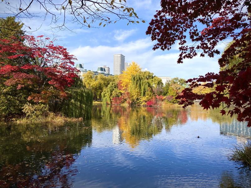 """2020年10月 『錦秋の札幌:八剣山、中島公園、北海道大学』October 2020 \""""Autumn Color in Sapporo\""""_c0219616_17575936.jpg"""