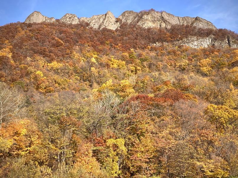 """2020年10月 『錦秋の札幌:八剣山、中島公園、北海道大学』October 2020 \""""Autumn Color in Sapporo\""""_c0219616_17575970.jpg"""