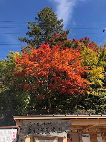 紅葉~三峯神社٩(´꒳`)۶_e0152329_16461330.jpg