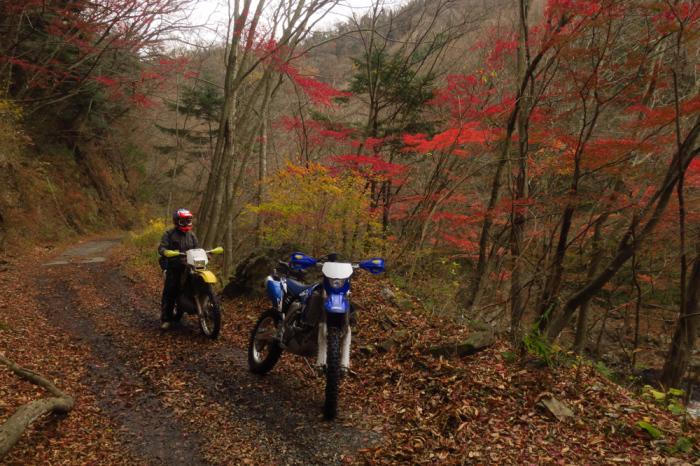 初冬のいわき林道ツーリング (WR250F)_f0126932_20051109.jpg