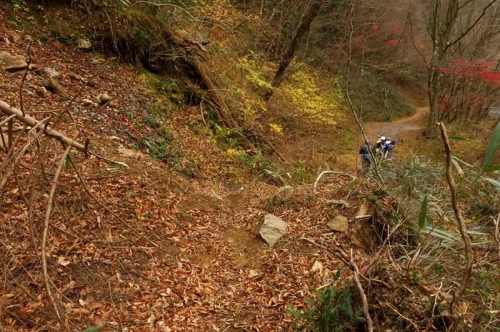 初冬のいわき林道ツーリング (WR250F)_f0126932_20052245.jpg