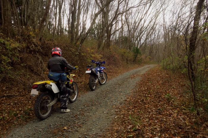初冬のいわき林道ツーリング (WR250F)_f0126932_20100406.jpg