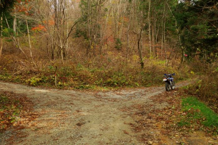 初冬のいわき林道ツーリング (WR250F)_f0126932_20101360.jpg