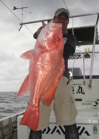 お正月用に高級魚を釣ろう!款璽丸_c0203337_21383654.jpg