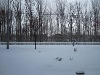 ついに根雪か_e0143145_11515149.jpg