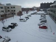 ついに根雪か_e0143145_11515883.jpg