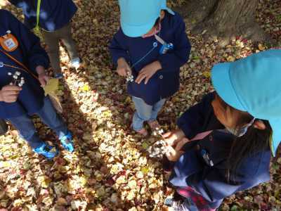 富浜緑地にて緑地見学会を行いました!R2.12.8_d0338682_13225995.jpg