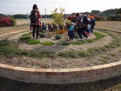 富浜緑地にて緑地見学会を行いました!R2.12.8_d0338682_13371631.jpg
