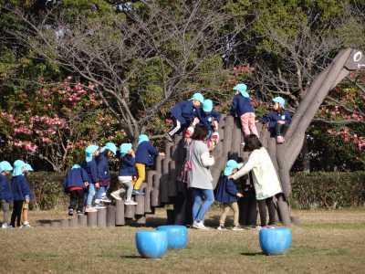 富浜緑地にて緑地見学会を行いました!R2.12.8_d0338682_13391816.jpg