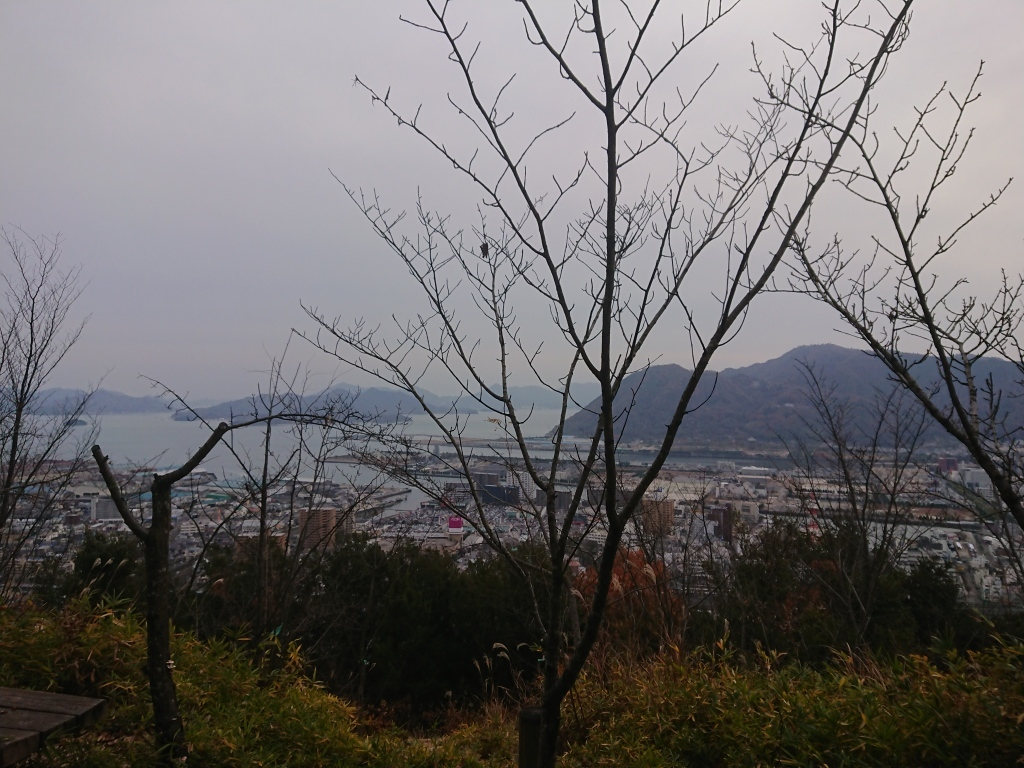 今年、最後の登山「大峰山」から「桜山」_c0339918_15512724.jpg