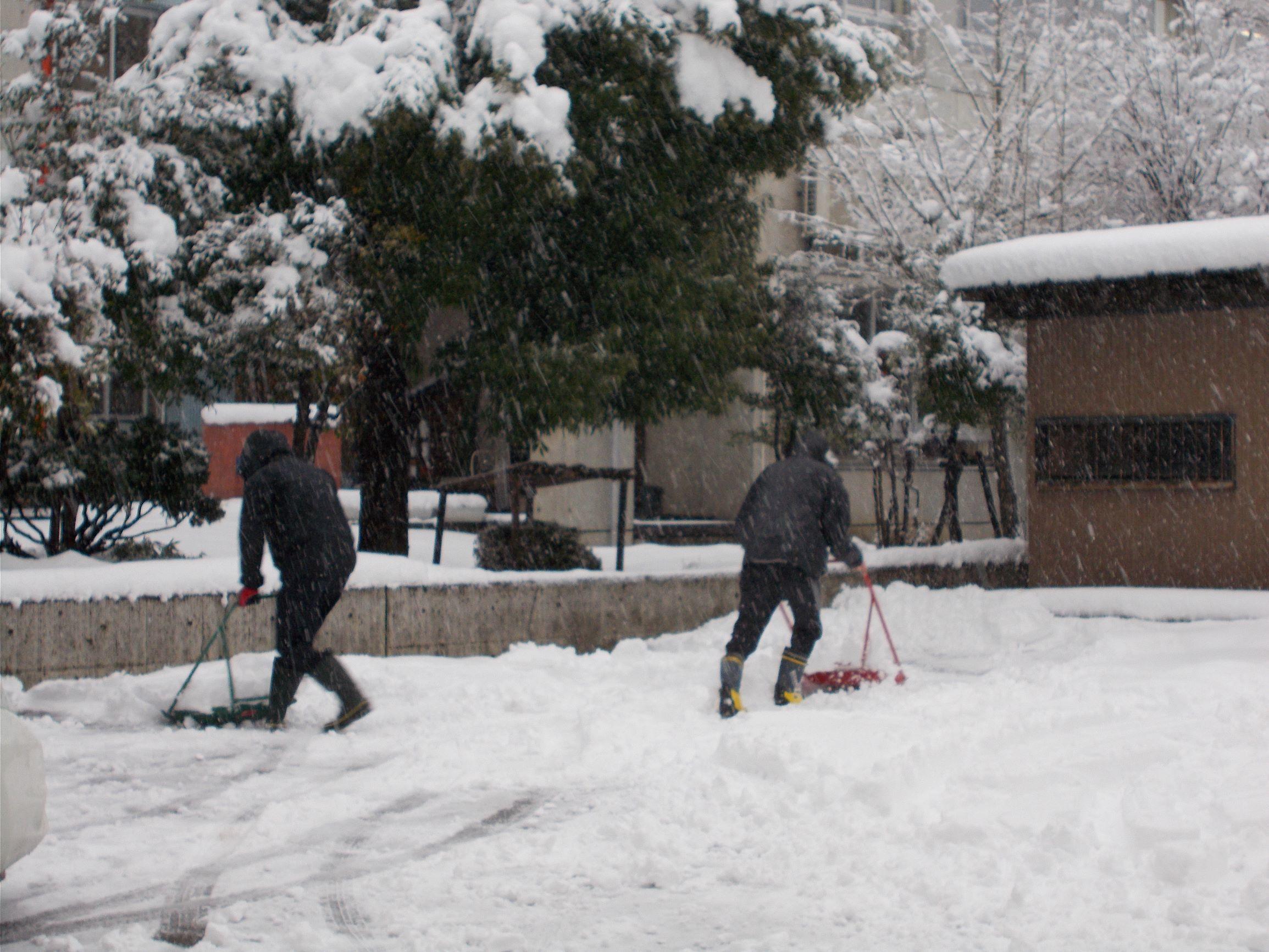 長岡サポステ雪情報_c0204368_09594799.jpg