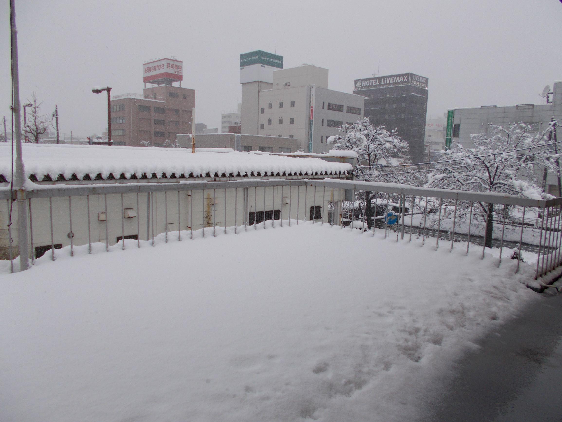 長岡サポステ雪情報_c0204368_09595677.jpg