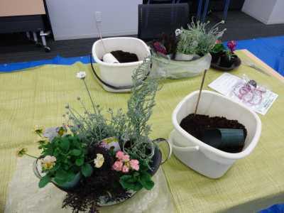 園芸講習会「クリスマスの寄せ植えづくり」開催の様子R2.12.4_d0338682_10282306.jpg