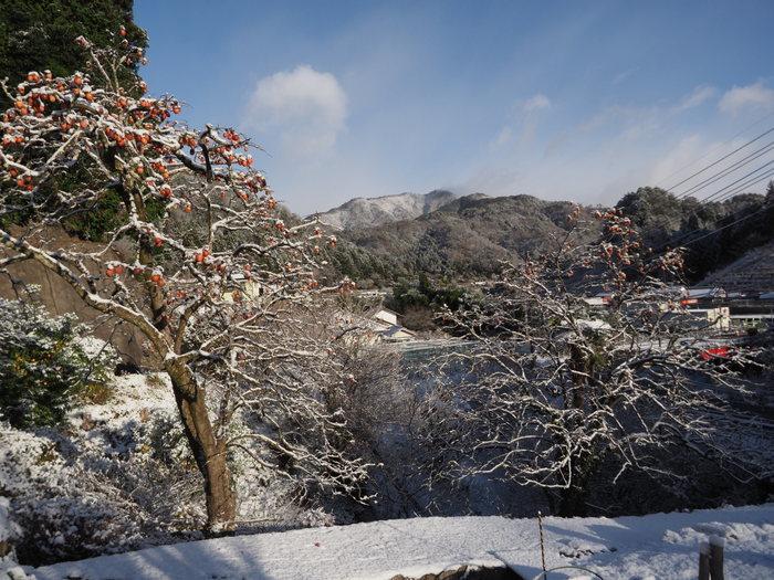 寒山(さぶやま)方面と庭の雪_c0116915_22210544.jpg