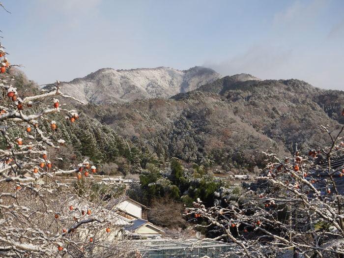 寒山(さぶやま)方面と庭の雪_c0116915_22214260.jpg