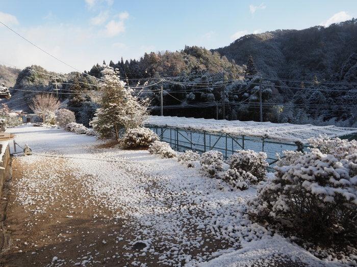 寒山(さぶやま)方面と庭の雪_c0116915_22220931.jpg