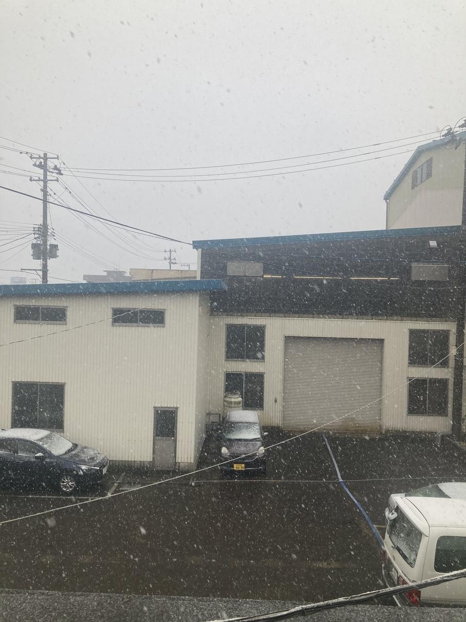 初雪&大雪_f0270296_14171546.jpg